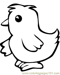 Small Picture Chicken Coloring Page 08 Coloring Page Free Chick Coloring Pages