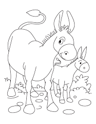 Small Picture Donkey and Foal coloring page Download Free Donkey and Foal