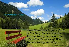 Beautiful Sceneries Quotes Best of Slow Down And Enjoy Life Inspirational Quotes Pictures