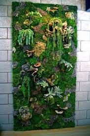 plantedart s living walls for interior spaces on live succulent wall art with succulent vertical garden mural by merino flora jeanette s garden