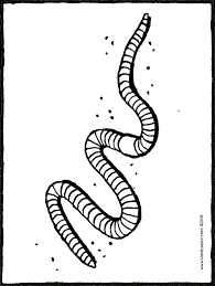Kleurplaat Regenworm Ausmalbilder Biene Maja Kostenlos Malvorlagen