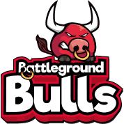 Bulls Logo von | Spreadshirt