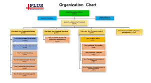 Organizational Structure Plus Exploration