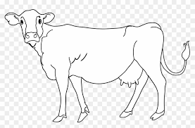 cow clipart black and white. Beautiful Black Cow Coloring Page  Clipart Black U0026 White In And