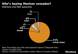 Avocado Price Chart 2018 Mexican Hass Avocado Prices Jump 34 The Most In A Decade