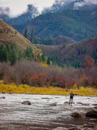 Trout Fishing On The Bitterroot River And Creeks