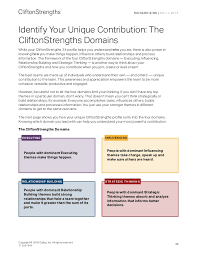 My New Clifton Strengthsfinder 34 Report