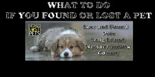 Lost and Found Pets Long Island Nassau Suffolk County Home