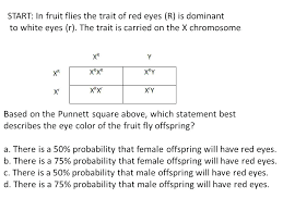 Eye Color Recessive Dominant Chart Eye Color Inheritance Chart Which Is Dominant Genetics
