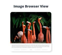 Photo Gallery by 10Web – Mobile-Friendly Image Gallery – WordPress ...