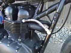 triumph bonneville t100 thruxton scrambler wiring diagram evan relocating oil cooler triumph forum triumph rat motorcycle forums