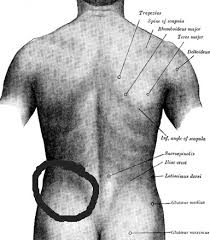 sharp lower back pain after deadlifts