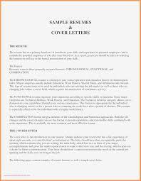 Cover Letter Upload Format Best Format For Resume Upload Symde Co