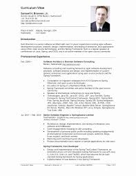 Resume Doc Cv Resume Template Awesome Cv Resume Template Doc Best Of Resume 64