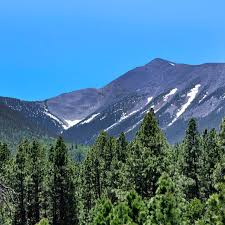 These maps also provide topograhical and contour idea in. Humphreys Peak Flagstaff Arizona Atlas Obscura
