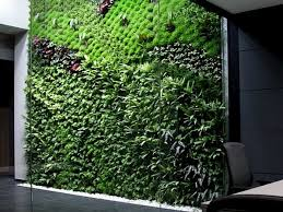 Amazing Indoor Vertical Garden Plants Spains Largest Vertical Garden Cleans  Indoor Office Air