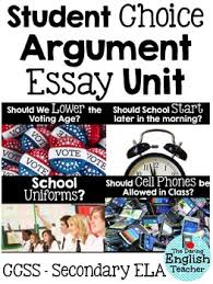 the voting age be lowered to essay should the voting age be lowered to 16 essay