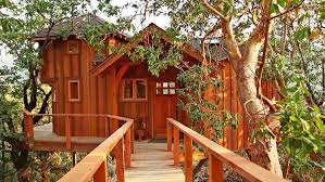 treehouse masters. 3   Your Childhood Dream Home: The Extreme Treehouses Of \ Treehouse Masters
