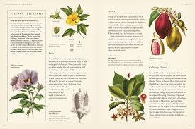 as the authors point out in the preface when it comes to being a good gardener making connections is what it is all about knowing what can grow in your