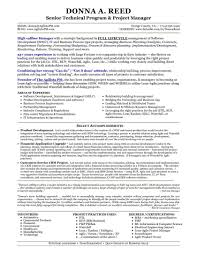 Project Management Resume Template New Free Healthcare Summary