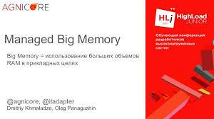 BigMemory - работа с сотнями миллионов бизнес-объектов / Дмитрий Хмал…