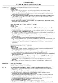 Download Senior Technical Account Manager Resume Sample as Image file