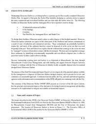 Executive Summary Example Resume Unitedijawstates Com