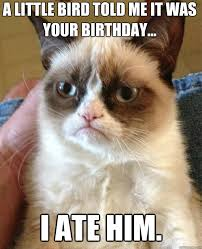 grumpy cat birthday bird. Plain Cat A LITTLE BIRD TOLD ME IT WAS YOUR BIRTHDAY I ATE HIM Inside Grumpy Cat Birthday Bird L
