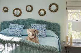 cleaning bedroom tips. Perfect Tips Bedrooms Cleaning Tips And Hacks Blue Wicker Bed With Dog Intended Bedroom Y