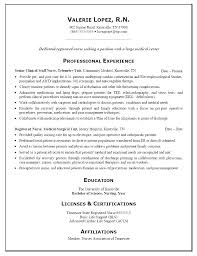 Resume Templates For Nursing Students Gorgeous Experienced Nurse Resume Examples Of Resumes Nursing Portfolio