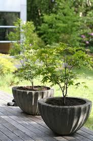 Garden Pots Best 20 Plastic Pots Ideas On Pinterest Inside Garden Cheap