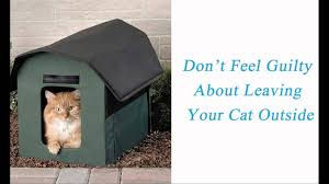 Heated Outdoor Cat House For Winter Youtube
