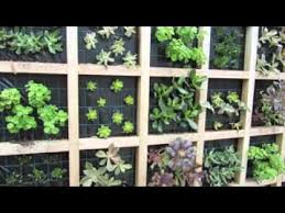 Small Picture Easy vertical succulent garden design ideas YouTube