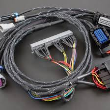 rogue wiring harness for stand alone engine managment