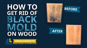 how to remove black toxic mold from wood