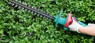 how to repair an electric hedge trimmer
