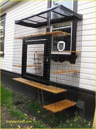 this catio is the perfect example of a window perch gone mega