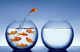 Написание курсовых работ по маркетингу вы можете у нас в nizhnij  Написание курсовых работ по маркетингу