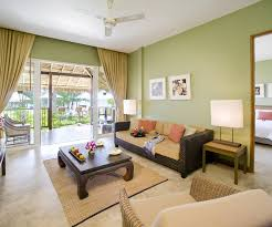 living room paint colors ideasgreen colors for living room  Centerfieldbarcom