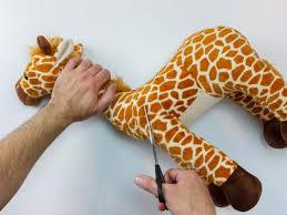 mount stuffed animals as wall art