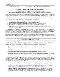 Title Vice President Sales Resume A Good Resume Example