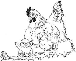 Small Picture Luke 1331 35 as a hen gathers her brood under her wings