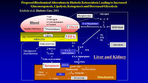 Hhs Vs Dka Chart Diabetic Ketoacidosis And Hypersmolar Non Ketotic Coma
