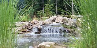 garden pond design ideas landscaping