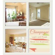 champagne paint colorFavorite Neutral Paint Colors from Sherwin Williams  real estate