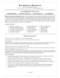 Examples Of Banking Resumes Examples Of Banking Resumes Resume
