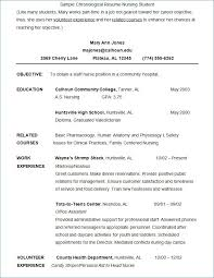 College Student Resume Template Microsoft Word Interesting College Student Resume Templates Microsoft Word Inspirational