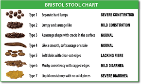 Stool Odor Chart What Your Poop Says About Your Health Better Gut Better