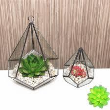 geometric diamond glass terrarium