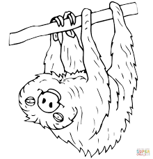 Small Picture Baby Sloth Coloring Pages Coloring Coloring Pages